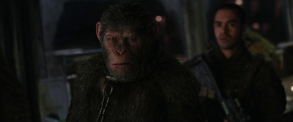 Планета обезьян: Война (2017) HDRip-AVC | Лицензия, L1